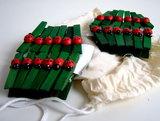 Houten wasknijpertjes groen met lieveheersbeestje_9